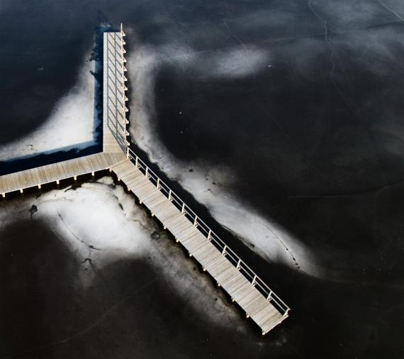 Dreptak nad lodem w Jarocinie (gm. Nisko)
