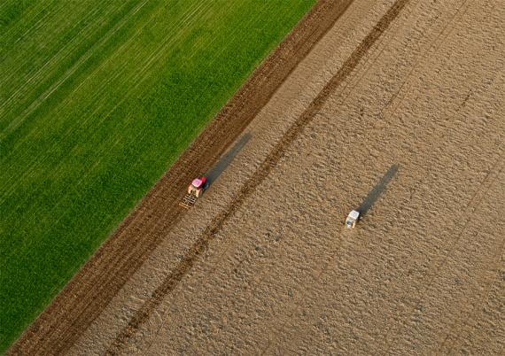 Traktory w polku - rozsiewanie i bronowanie