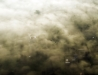 Gołąbki nad Rudnikiem