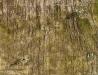 Wysypisko śmieci w Nisku po rekultywacji - widok ortogonalny