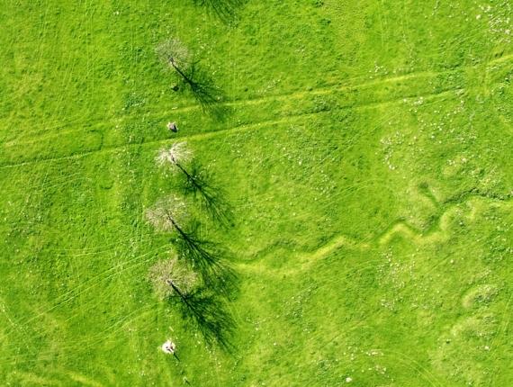Okopy i stanowiska strzelnicze widziane w lotu ptaka