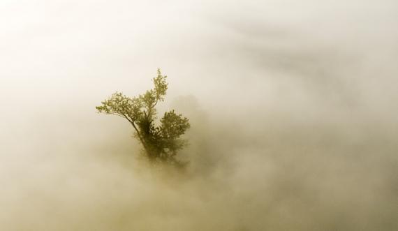 Mgły nad Sanem o świcie