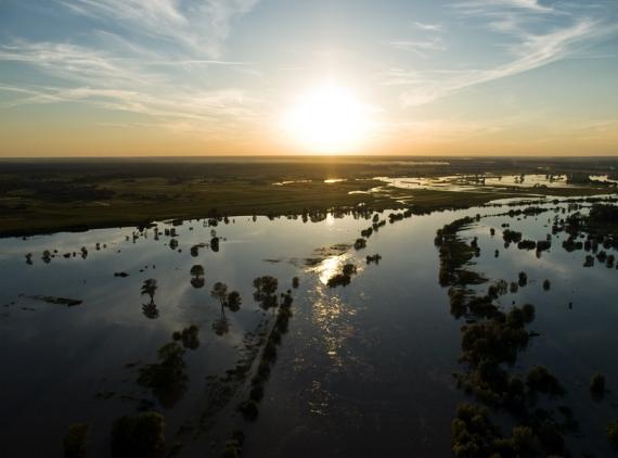 Sarzyna - obszar zalany przez San