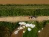 Akcja wzmacniania wałów przeciwpowodziowych - worki z piaskiem