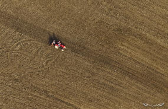Siewnik, traktor, ekipa - zasiew oziminy