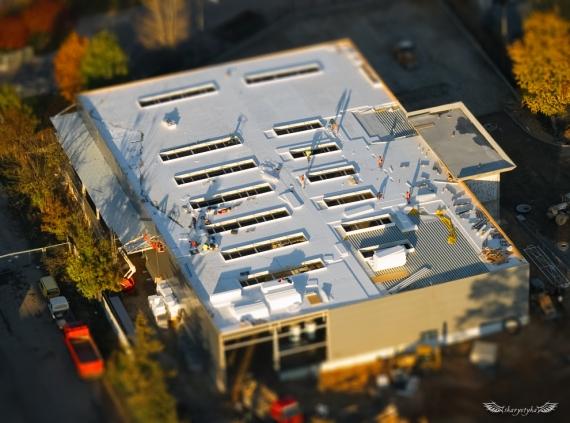Budowa hali - Nisko