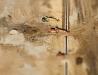 Efekt makiety w fotografii lotniczej #2