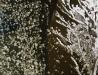 Rzeka San w zimie - ujęcie ortogonalne III